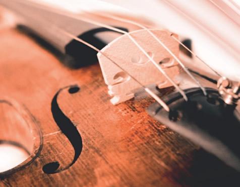 Tornano i concerti dei quartetti della liuteria toscana